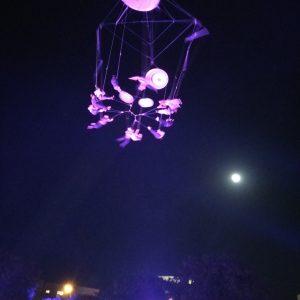 פסטיבל קרקס 2015